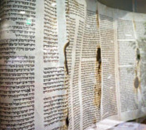 holocaust-torah-remnant